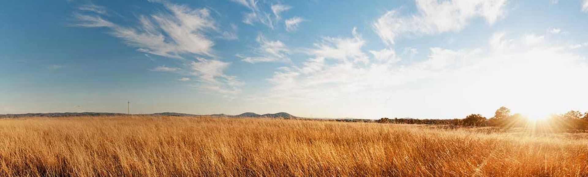 Landcare in the ACT Region