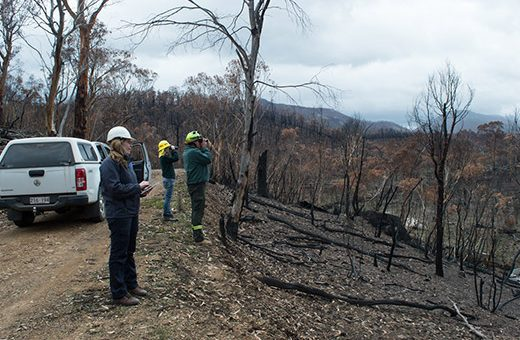 Orroral Valley Fire Impact Report