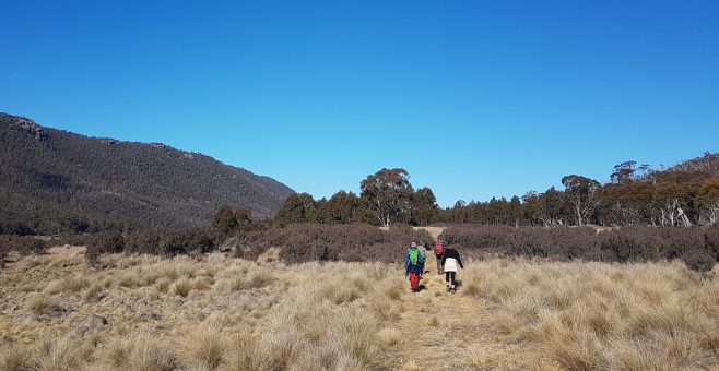 Walk for Namadgi