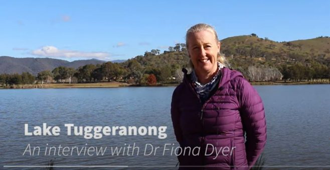 Lake Tuggeranong and Water Quality