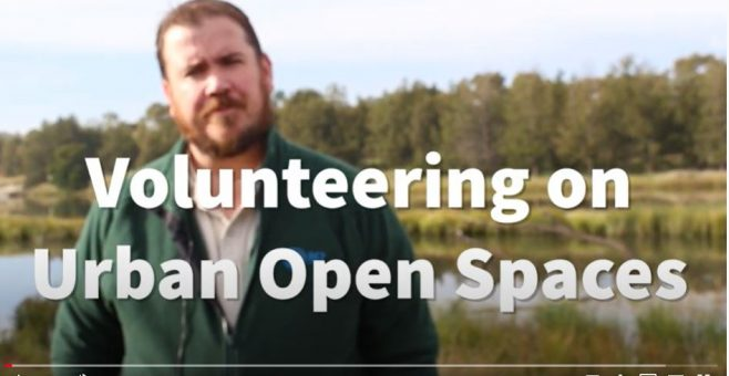 Volunteering on Urban Open Spaces