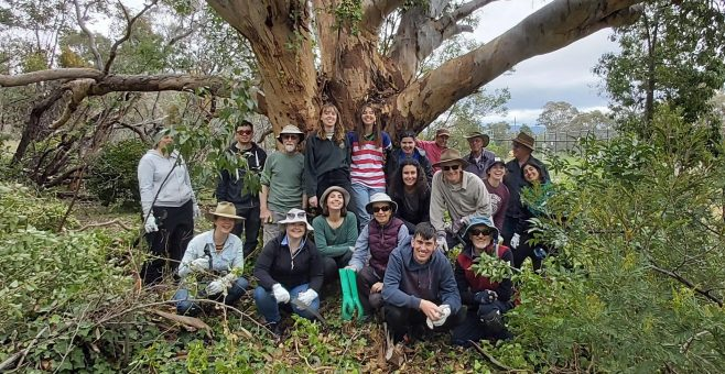 Landcare for our Future Kicks off for 2021
