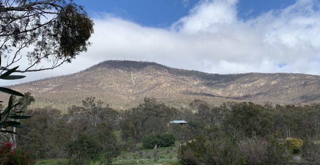 Namadgi Bushfire Recovery Kicks Off at the Visitors Centre