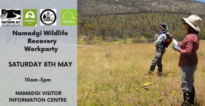 Namadgi Wildlife Recovery Event