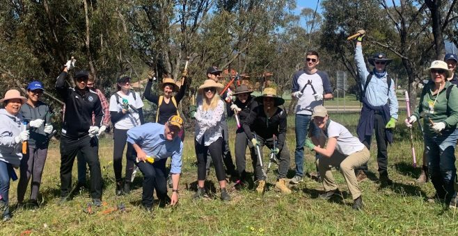 Landcare for our Future- What's Next?